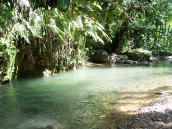 hiking trail of the Jesuits - Martinique