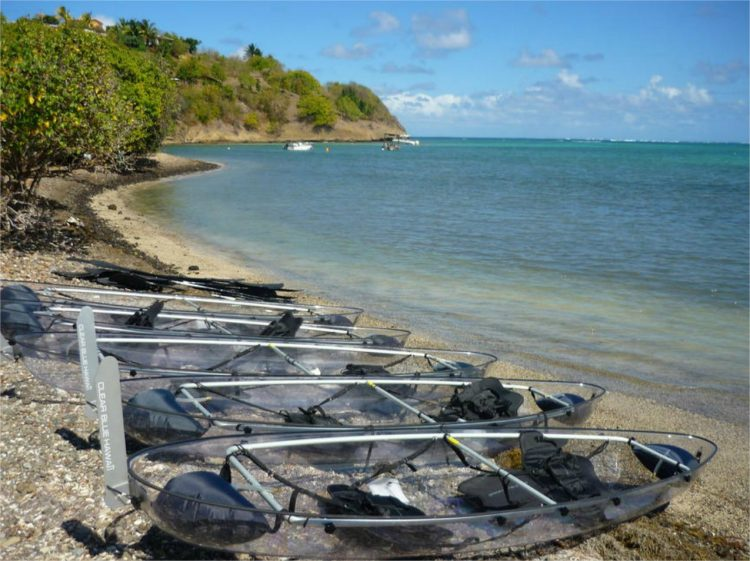 pirogues transparentes - activités Martinique