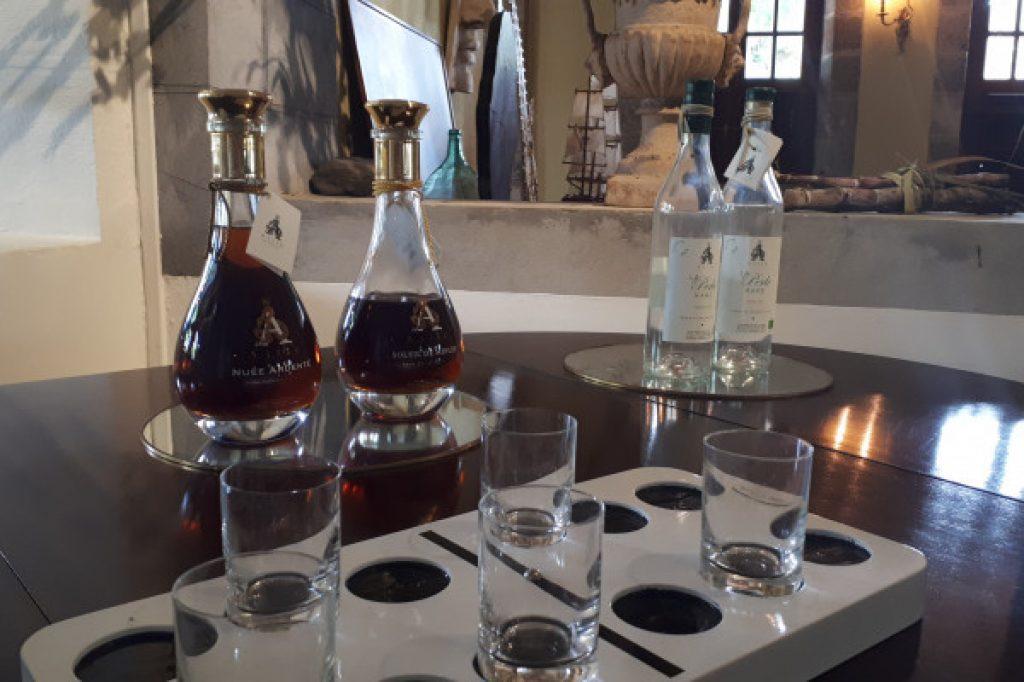 dégustation en distillerie
