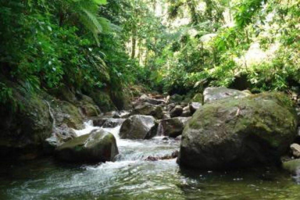 river - Martinique