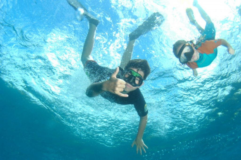 plongée, snorkeling martinique
