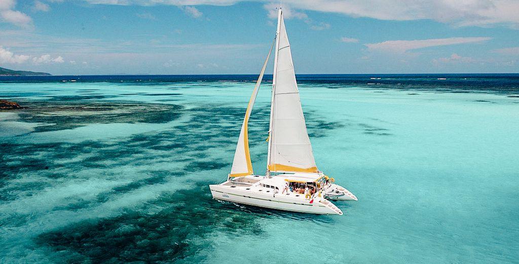 Catamaran sur les eaux de Martinique